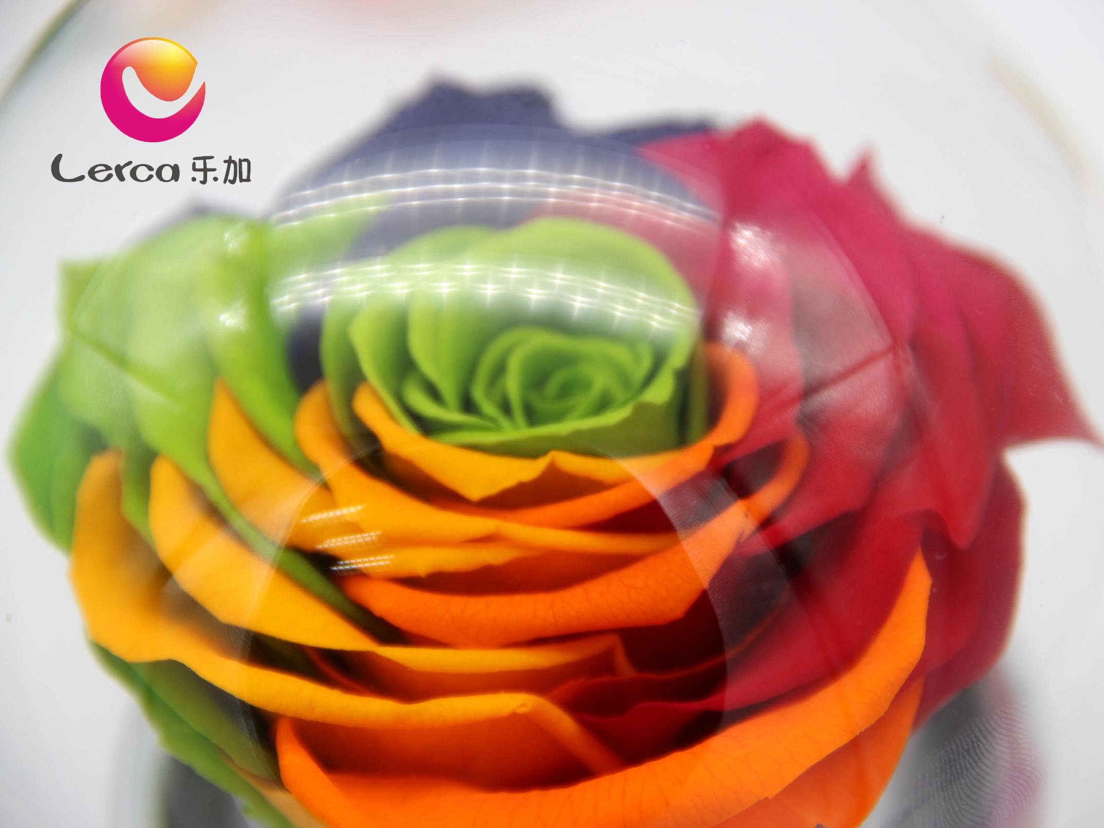 永生花玫瑰进口与国产的区别